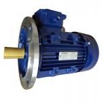 3HP motor